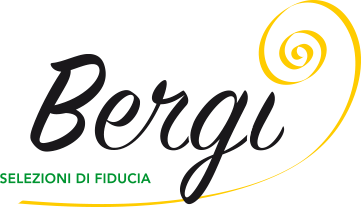 Bergi